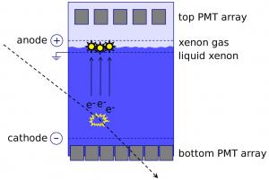Schema of XENON